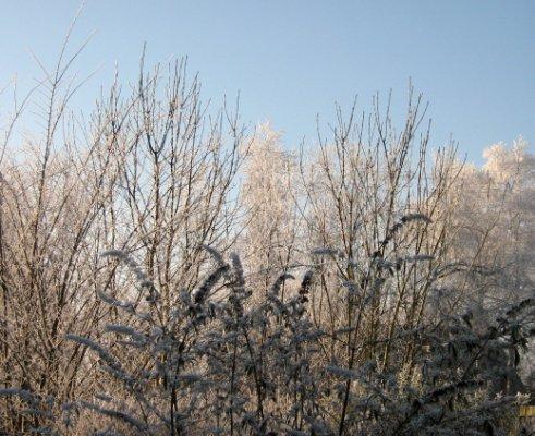 22 December 2007 - De Barrage 003